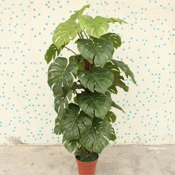 Artificial Big Leaves Decorative Plants Fake Plant For Indoor - Buy ...