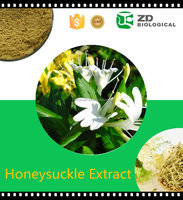 Plant Extract Chlorogenic Acid detox honeysuckle flower extract
