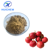 China Manufacturer Supply Natural Hawthorn Fruit/Leaf Extract as Health Supplement