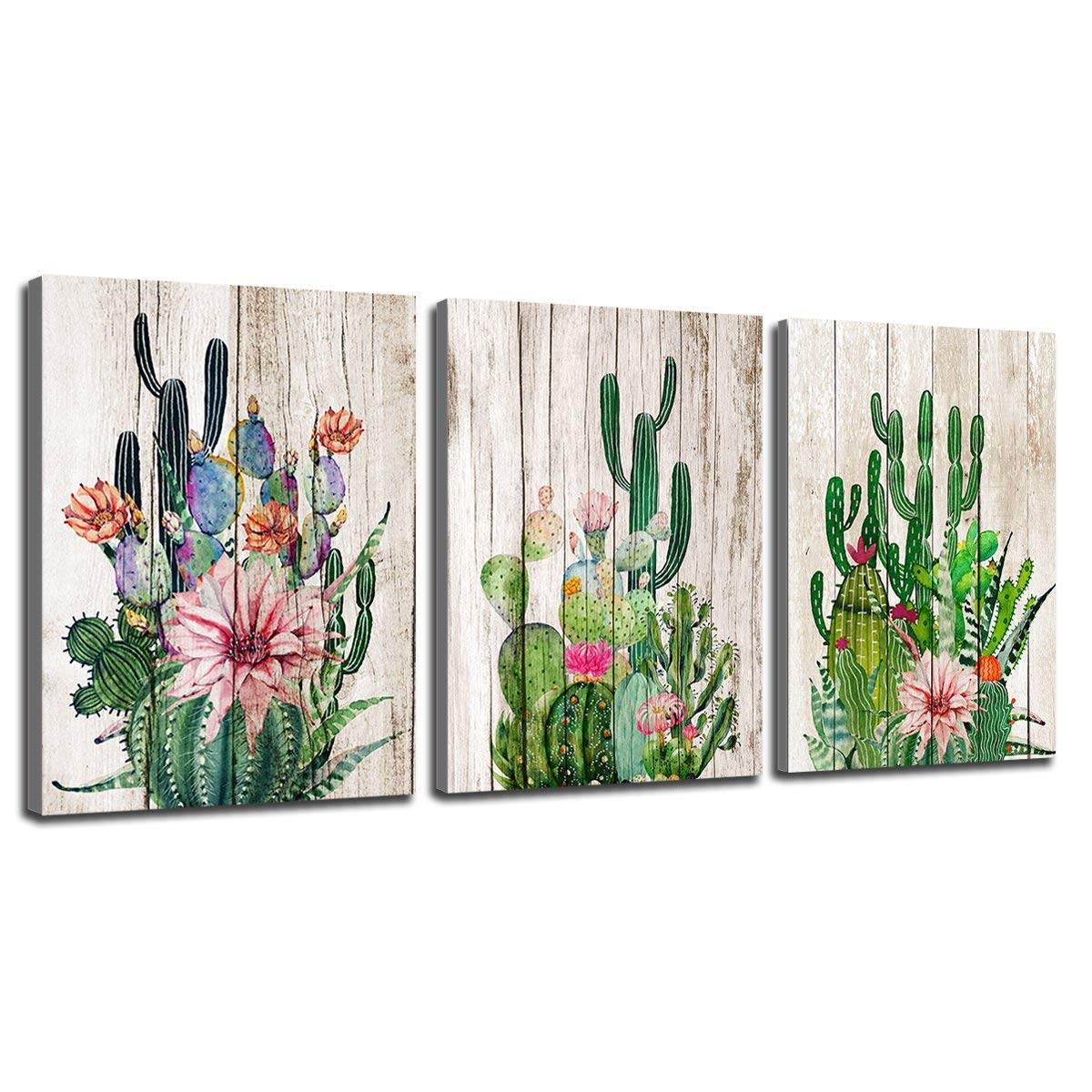"""Canvas Prints Wall Decor Art Cactus Desert Plant with Spiny Flower Watercolor Hand Painted on Wooden Board Modern Nordic Style Painting Pictures Homes Decorations Office 18"""" x 24"""" 3 Pieces / Set"""