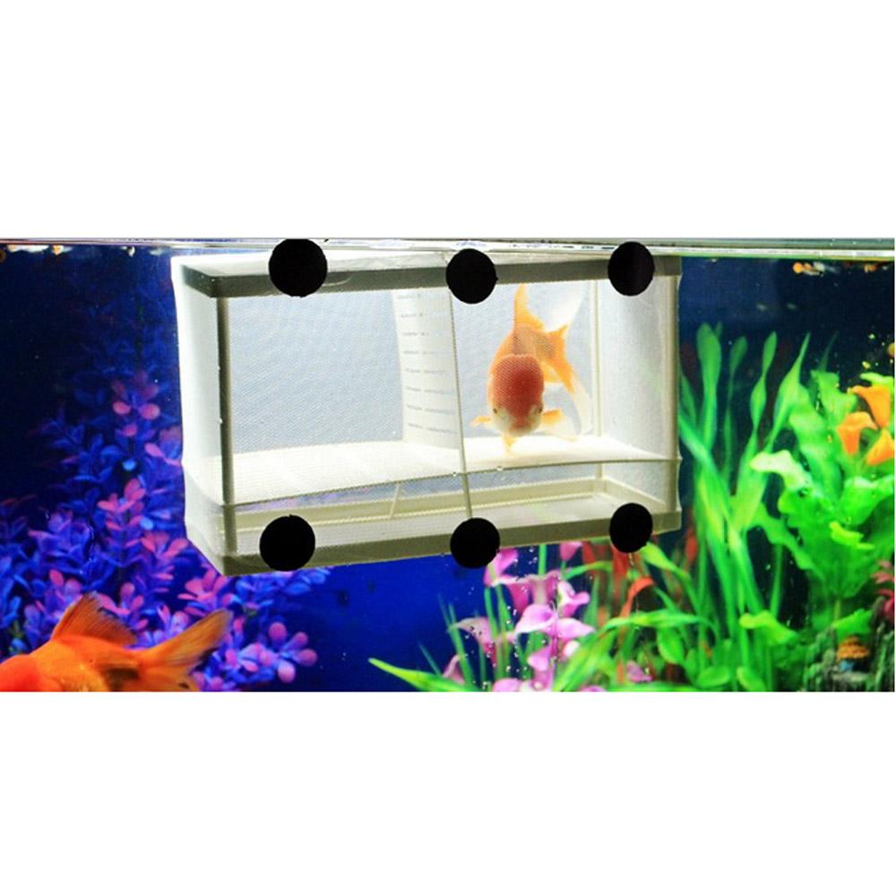 Freshwater aquarium fish ebook free download - Fish Breeding Fish Breeding Suppliers And Manufacturers At Alibaba Com