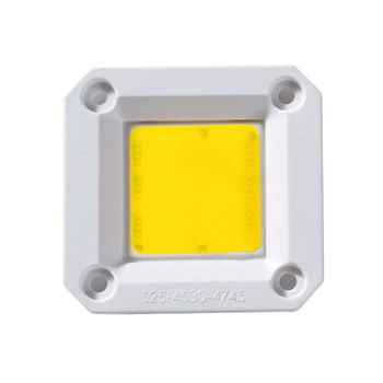 AC 220V 20W 30W 40W 50W 60W 70W Cob Led chip For COB Grow Light