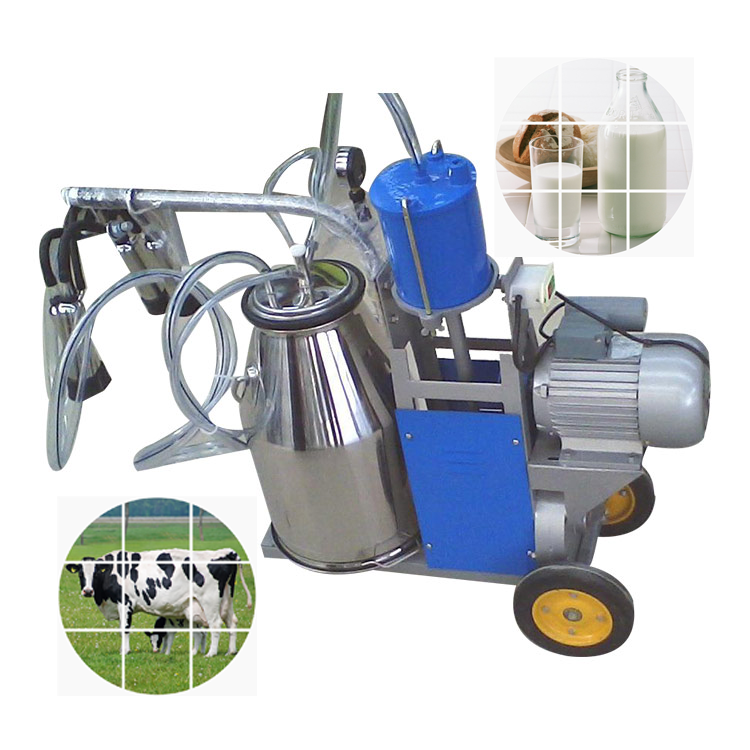 Buy Cow Milking Machine In India
