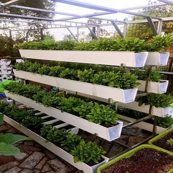 Hydroponic Fodder Strawberries Growing System Buy Gutter