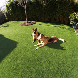 Different pile height artificial grass with no harm for people and pets for personal villa