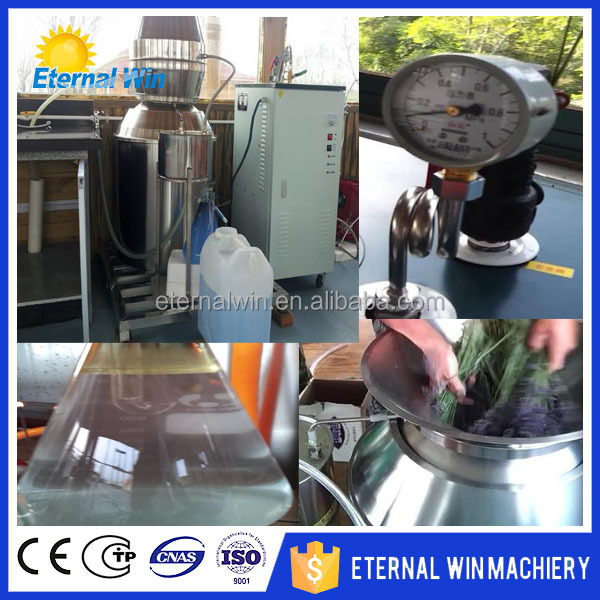 Eucalyptus/Cinnamon Ginger Oil Extraction Machine for Plant Essential Oil Extract