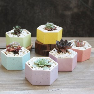 Hot sale rainbow hexagon flower pot ceramic for planter