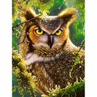 Owl Diamond Painting Full Square Embroidery Animals Pictures With Rhinestones Kit Home Decoration