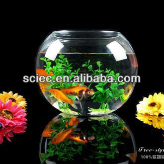 table glass aquarium fish tank