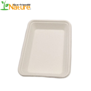healthy eco fda sugarcane bagasse disposable fast food tray biodegradable lunch trays