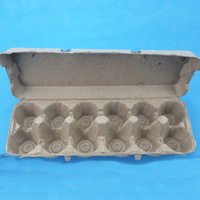 Biodegradable Paper 12 Egg Box Carton