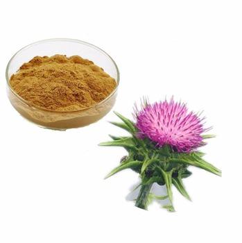 Pure Natural 80% Silymarin Milk Thistle Extract Powder - Buy Milk ...