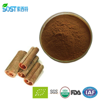 High Quality Pure Natural Cinnamon Powder