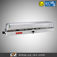 Explosion Proof Hid Lamp,250w,400w