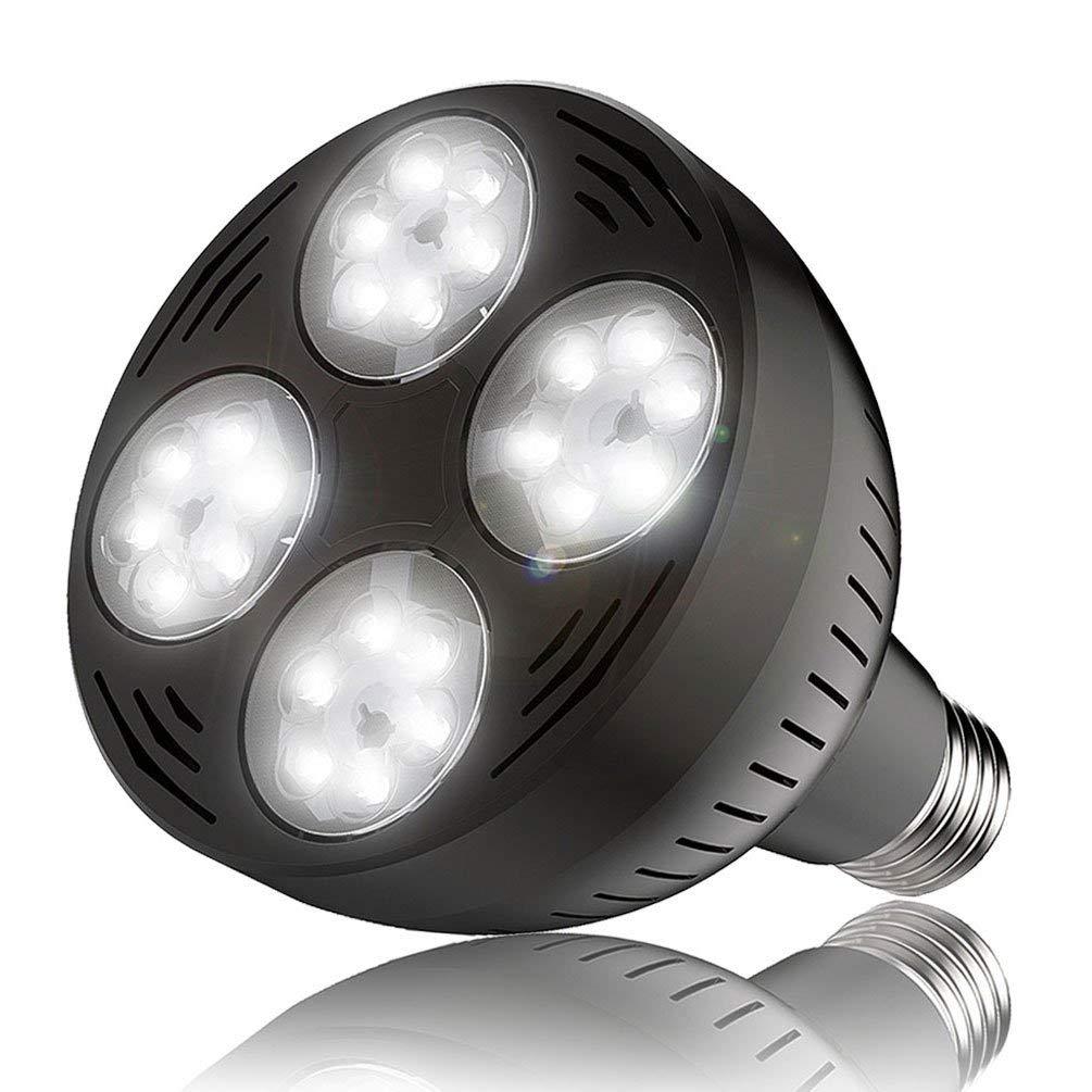 Jenaka 35watt 6000k Daylight White Light Swimming Pool LED Light Bulb LED PAR 30 Light E26 Screw Base 300-500w Traditional Bulb Replacement