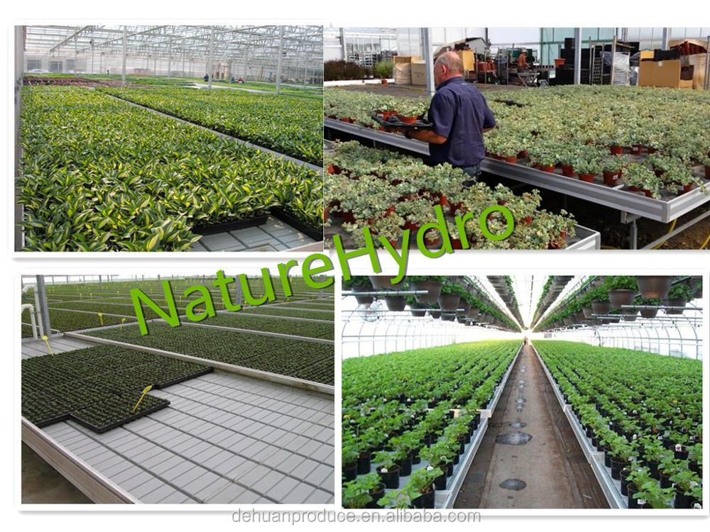 Plastic Plant Nursery Equipment Growing Trays