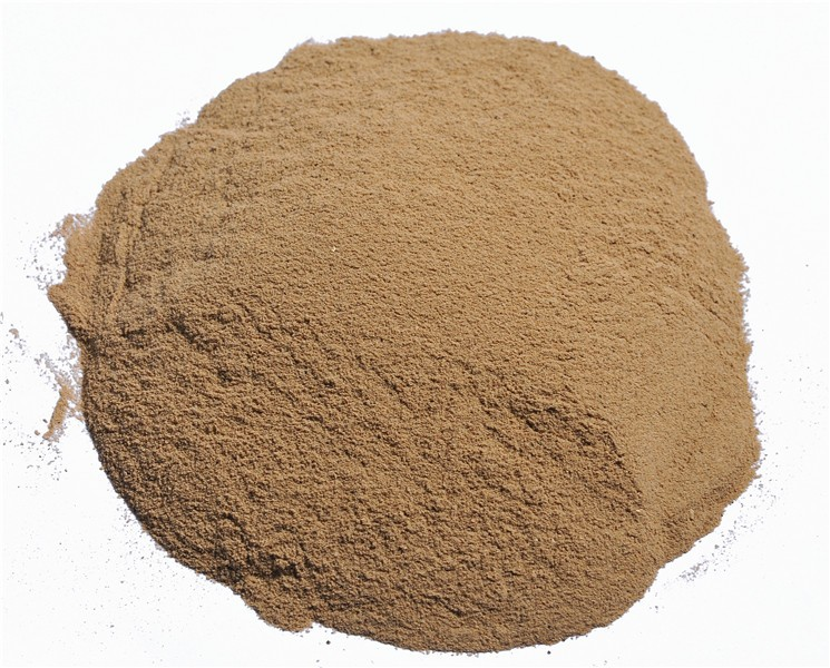 Brewers Yeast Powder Animal Feed Grade wholesale Probiotic