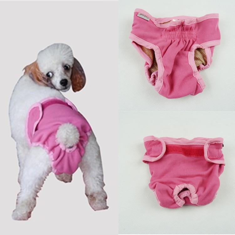 Dealglad/® 5m Retractable Pet Dog Leash Lead for Small Medium Large Dogs