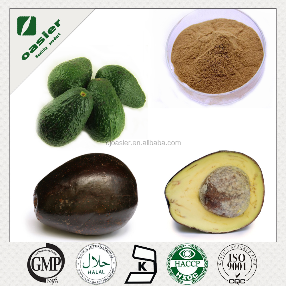 Factory Supply 100% Natural Avocado Extract 10% Phytosterols, Persea Americana Mill.