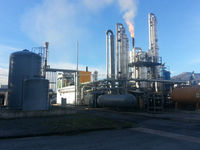 Biogas power plant in China biomass gasification power plant