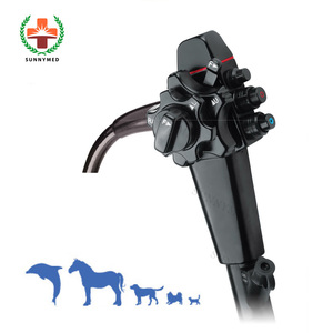 SY-P033 Electronic Veterinary flexible gastroscope vet video endoscope