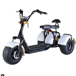Three wheel electric scooter with 2 seat off-road citycoco scooter