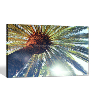 Sunshine through Palm Tree Picture Canvas Print/ropical Scenery Canvas Wall Art/Canvas Art for Wall Decal