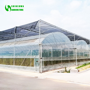 Agricultural Commercial Light Deprivation Polythene Greenhouse