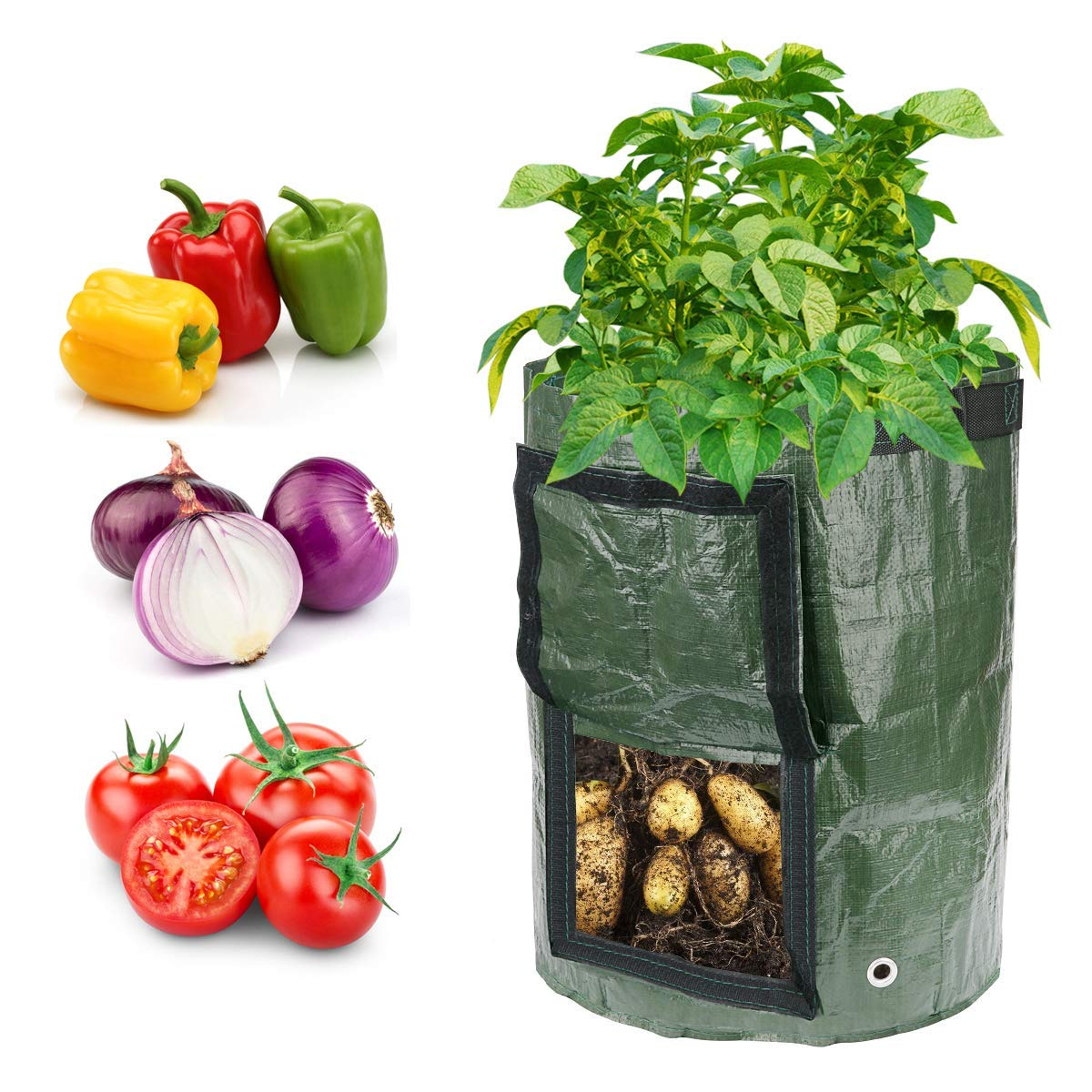Potato Grow Bag 10 Gallon Fabric Plant Bags for Potato, Tomato, Onion, Carrot,Vegetable, Mushroom,Sweet Potato,Flowers Indoor Outdoor Pack-2