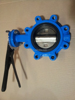 Strict quality management Cast Iron Lug Type Butterfly Valve
