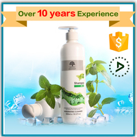 OEM Argan Oil Mint Shampoo Smoothing and Refreshing Hair Shampoo hair growth shampoo