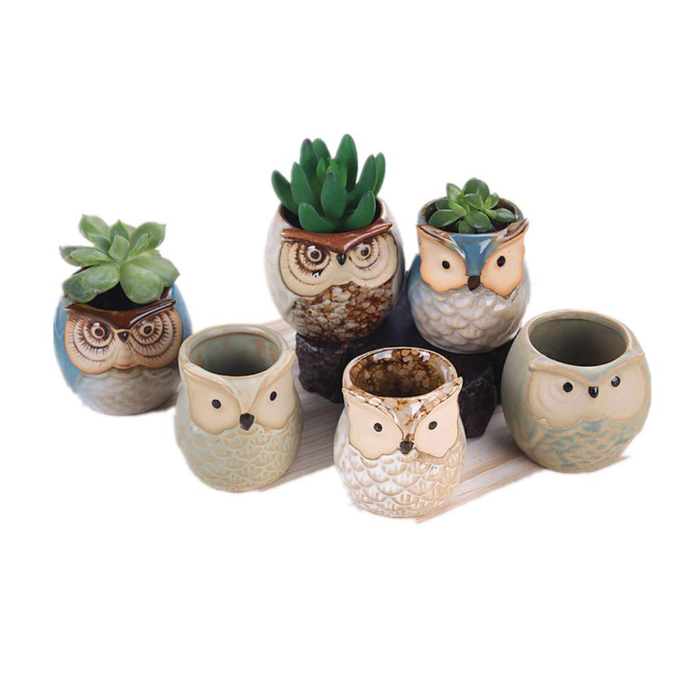 """Planters Various Styles Owl Ceramic Flower Pots with Holes, Cactus Succulent Plants and Small Flower pots Plants Pots Indoor and Outdoor Window Boxes with Set of 6(1.75-2""""x2.5"""")"""