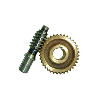 China transmission part nylon double threaded worm gear