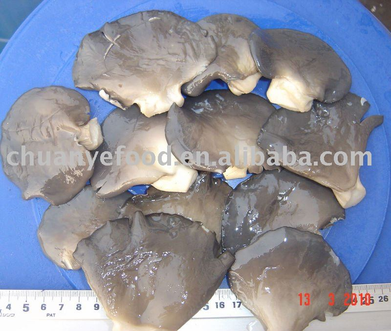 Whole Brine Grey Oyster Mushroom in Drums