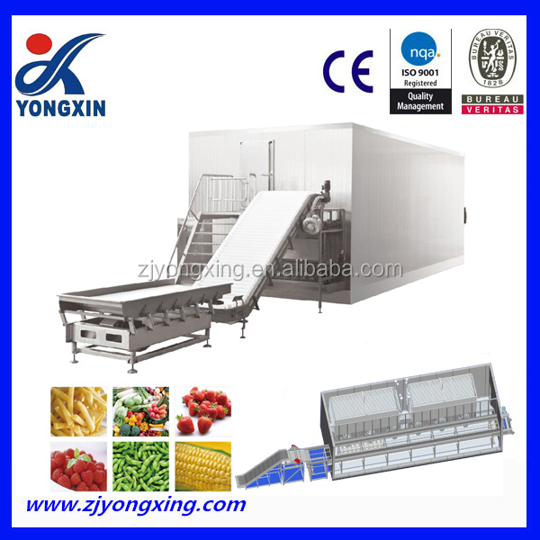Fluidized IQF freezer for vegetables and fruits