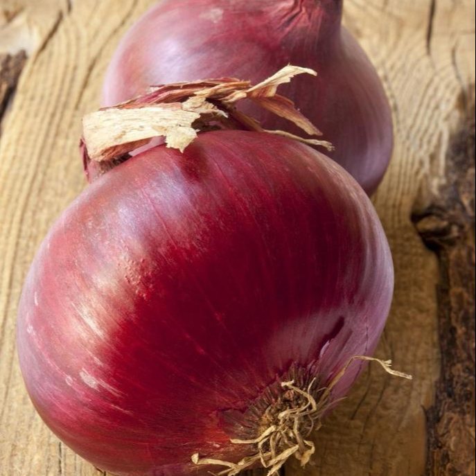Special grade fresh red onion wholesale