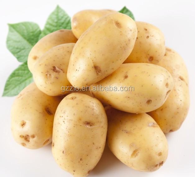 potato powder (1)