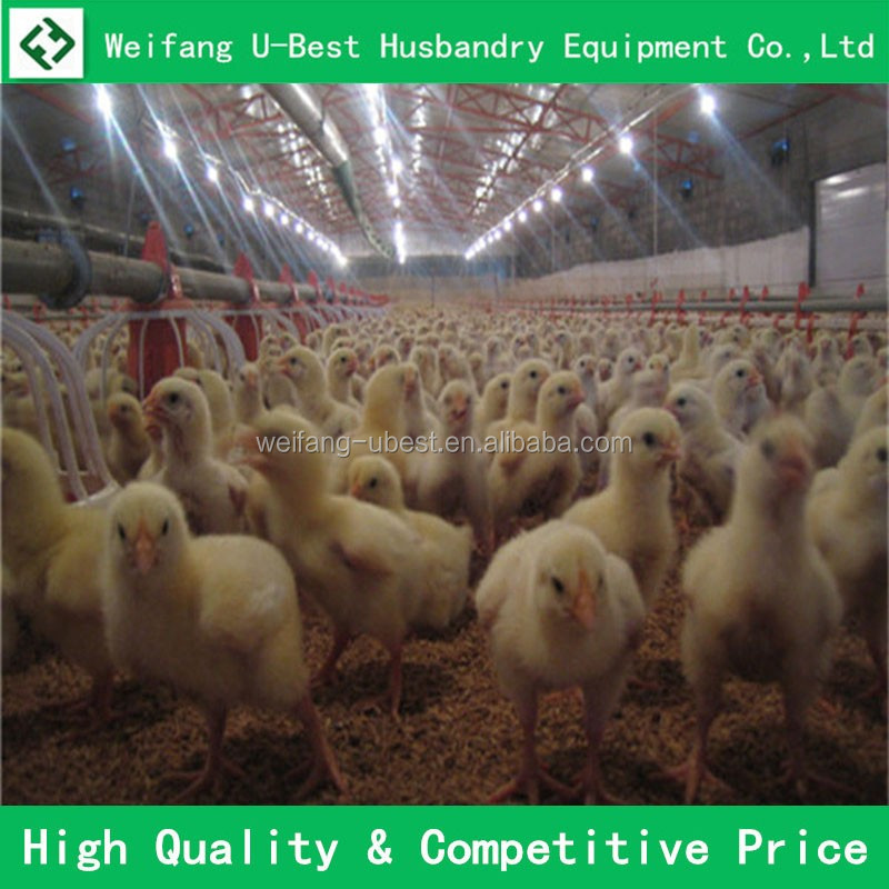 full automatic chicken egg incubator for sale chicken farm equipments