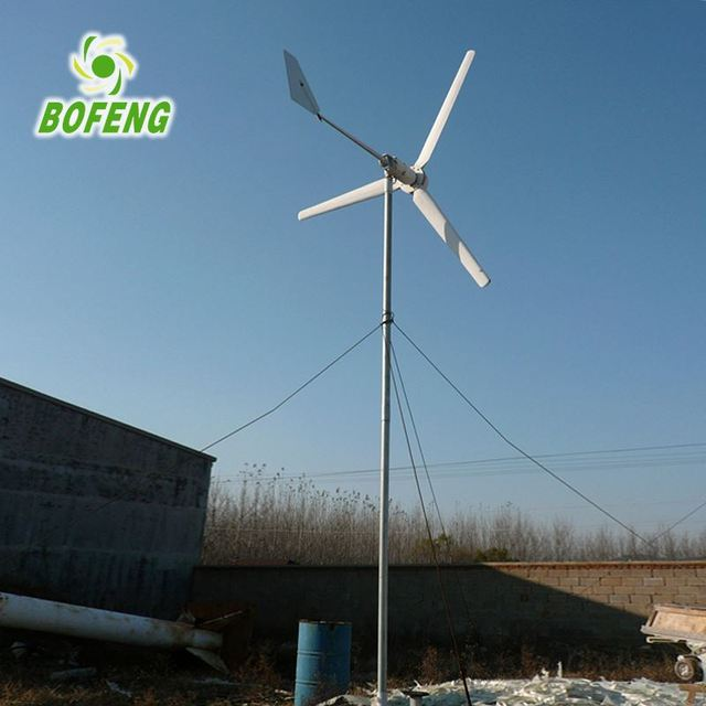 Aaa grade all kinds of 1kw horizontal axis wind turbine for wind mill electricity at home price