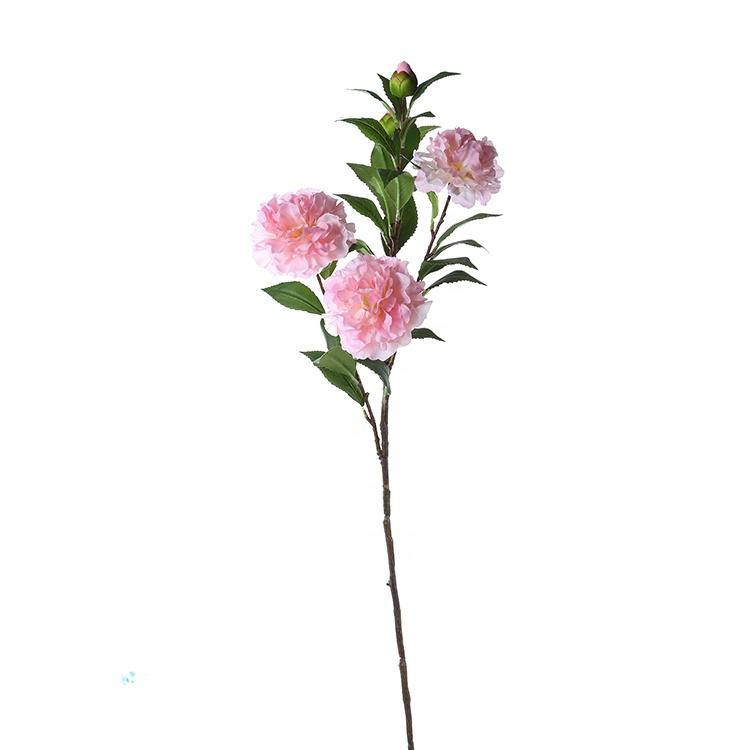 Розы цветы опт киев камелия, оформление букеты недорого