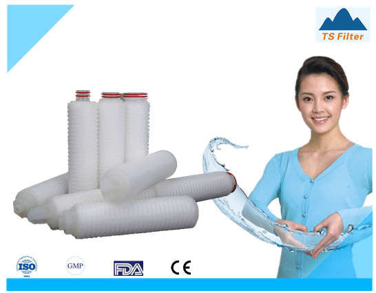 PVDF Membrane Hydrophobic Pleated Cartridge Filter For Oxygen Fas Filter