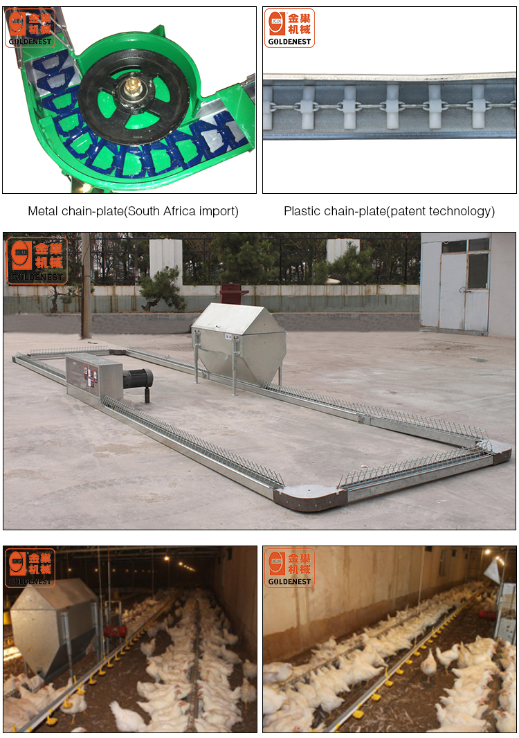 Comeetitive Price Chicken Farming Breeder Chain-Plate Open Trough Feeding System/South African Chain Equipment