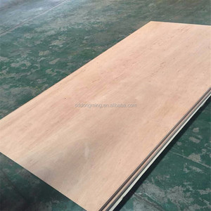 28mm Container Plywood Board Marine 19ply