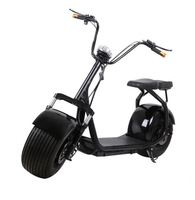 Most Popular High Quality Two Wheel 1000w Citycoco Scooter Self Balancing Electric Motorcycle Citycoco 60V Lithium Battery