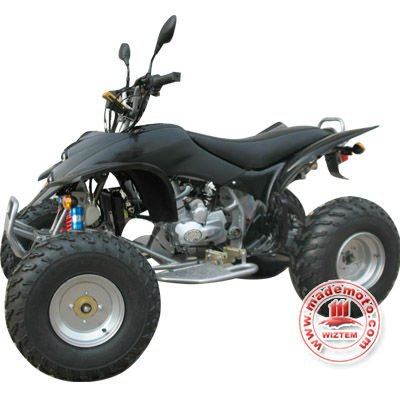 EEC Approved 4-Stroke 250cc Engine ATV with Water cooled engine WZAT2506EEC