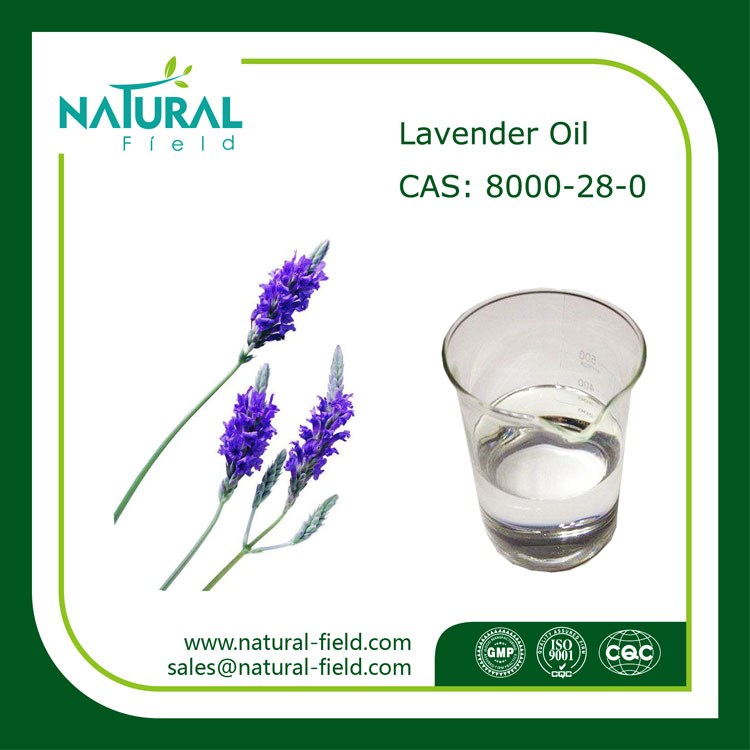 Aromatic Essential Oil of Natural Lavender, Lavender Essential Oil Price