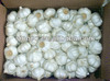 /product-detail/garlic-1478958302.html
