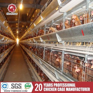 Egg Production Project, Egg Production Project Suppliers and