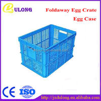 Foldable Plastic Egg Box Factory Wholesale Made of PE High Quality