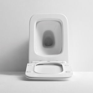 European Top Sanitary Ware One Piece Bathroom Square Standard Toilet Price